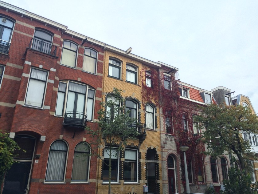 Different coloured brick buildings in our neighbourhood.