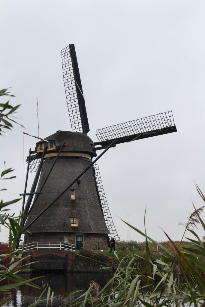 lawn cutting windmill
