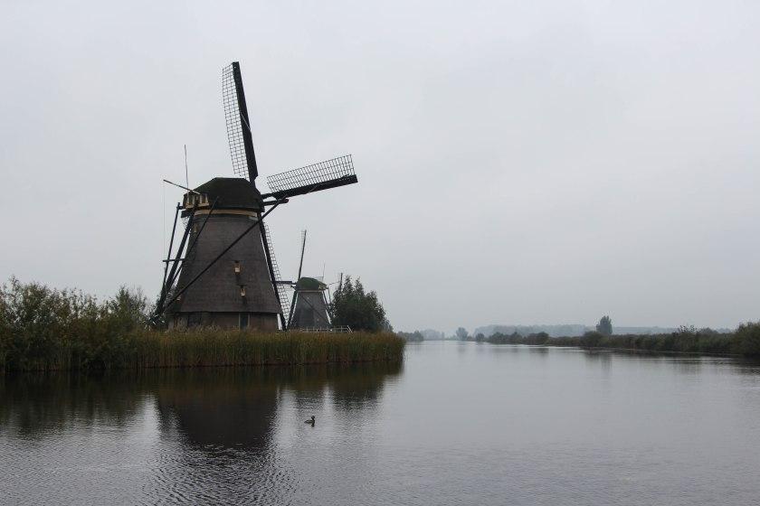 tranquil windmills