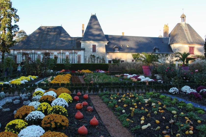 jardin de potager