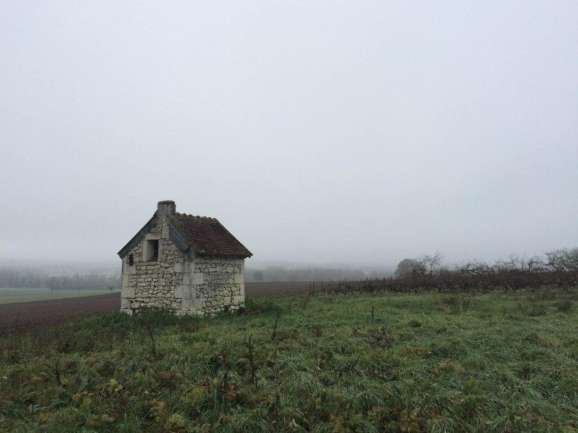 misty farm shed