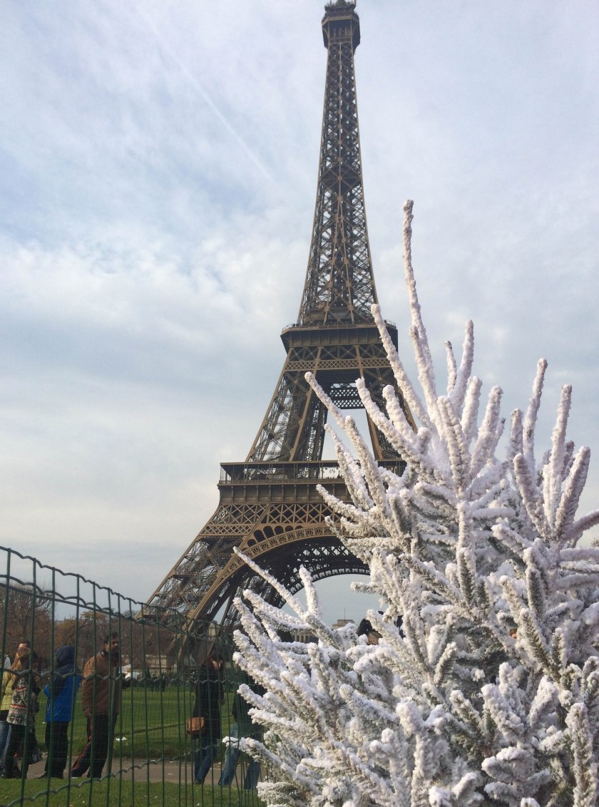 eiffel tower and flocked trees
