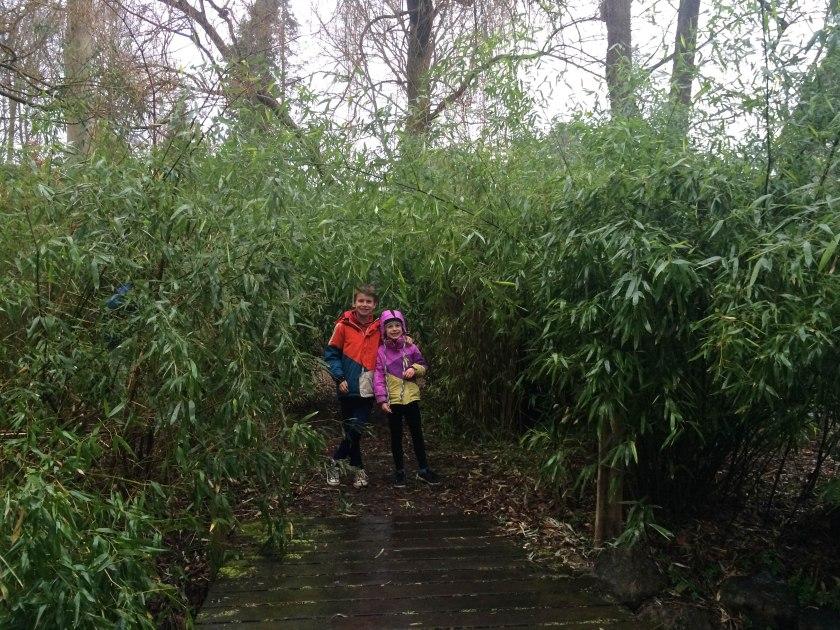 bamboo kiddos