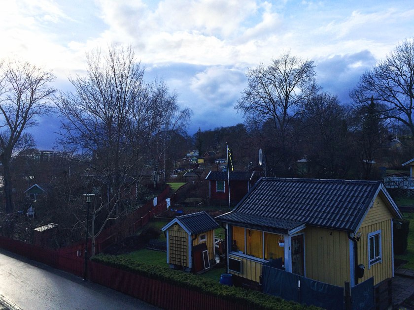 evening walk, houses on hill
