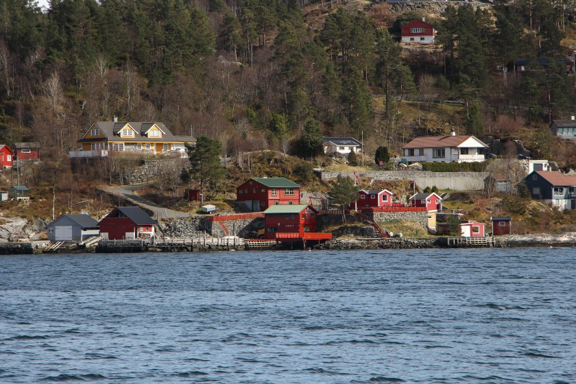fjord red houses on shore